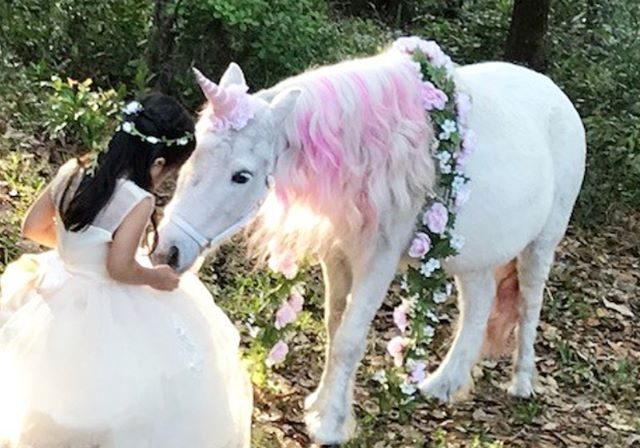 Girl with a pink unicorn